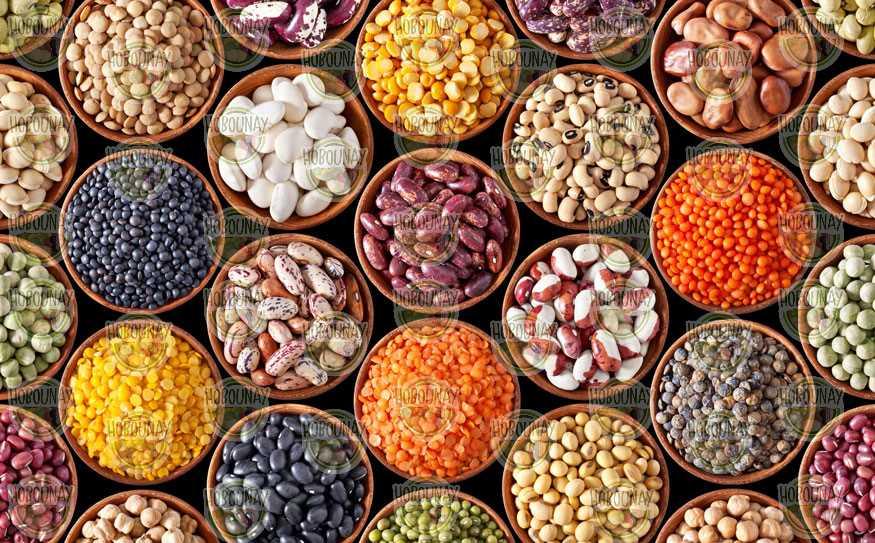 خرید فروش عمده صادرات قیمت لوبیا قرمز