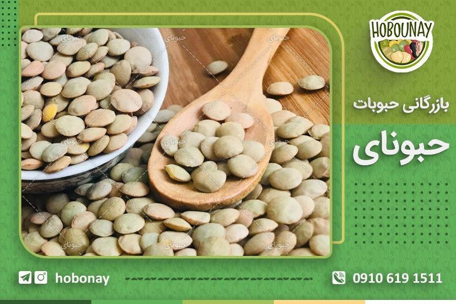 خرید عمده انواع عدس موجود در ایران