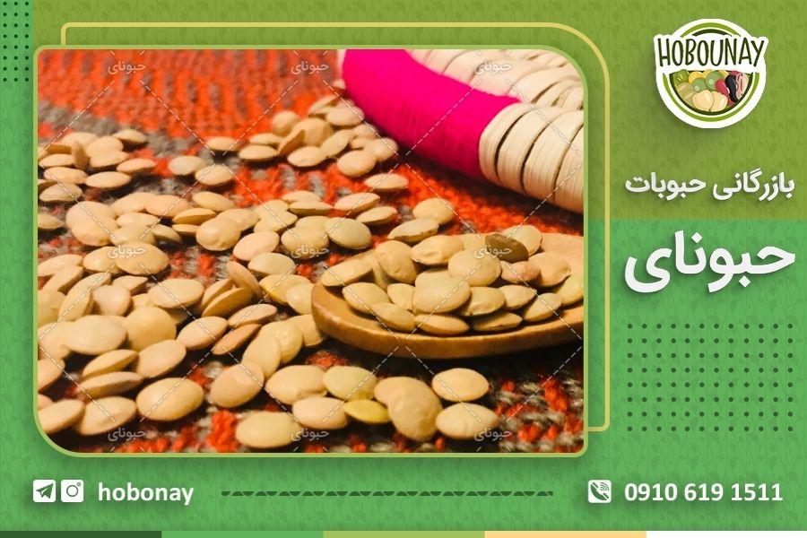 خرید عمده عدس محلی کرمانشاه