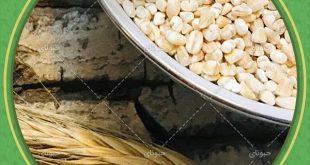 خرید بدون واسطه از بازار حبوبات ایران