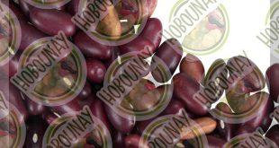 قیمت خرید فروش صادرات عمده بهترین لوبیا قرمز ایرانی