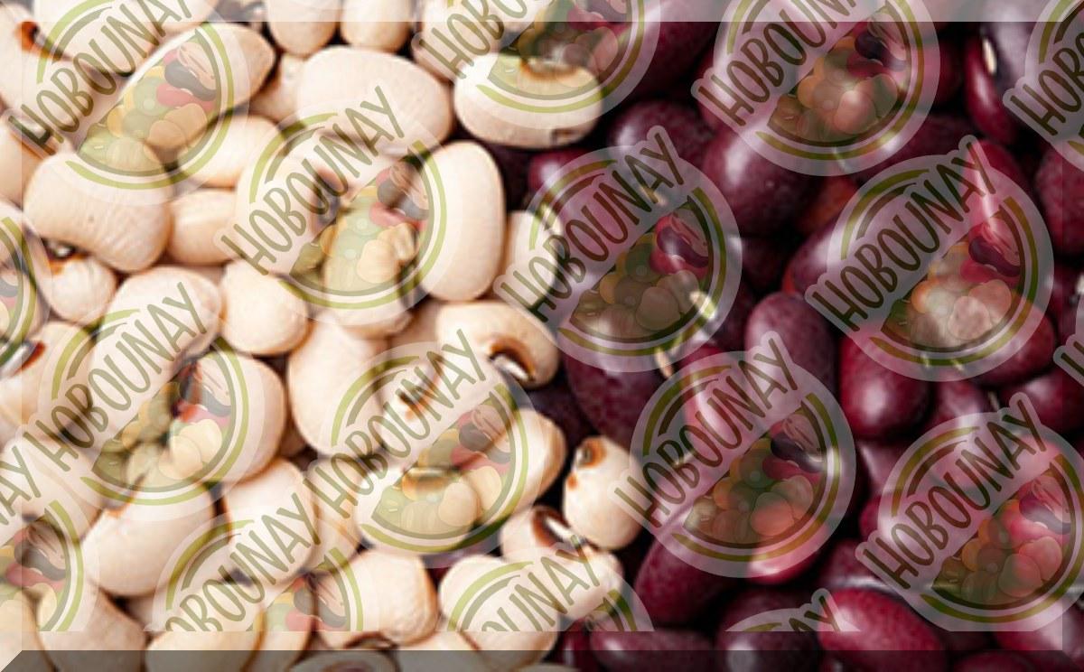 فروش عمده لوبیا قرمز خمین